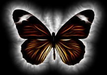 Butterfly by Pete Linforth copy